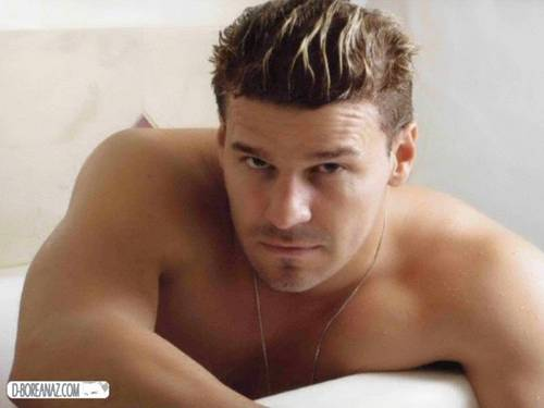 David Boreanaz wallpaper containing skin called david-boreanaz365421