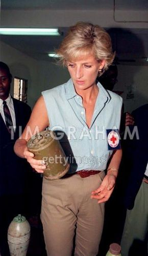 diana in angola