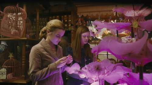 hermione and ginny in 6th साल