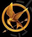 Hunger Games Logo - the-hunger-games fan art