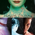 slovenian covers of vampire academy