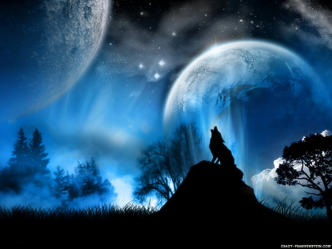 Fire and Ice the wolf pack wolf wallpaper