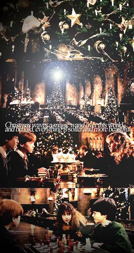 Гарри Поттер Обои *Merry Christmas!* Обои and background фото ...
