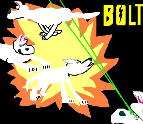 Bolt In Action