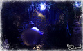 Christmas Time - christmas photo