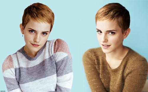 Emma Watson hình nền