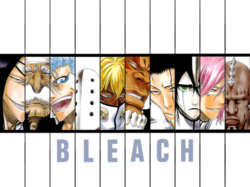 anime bleach wallpaper probably containing a stained glass window and anime entitled Espada
