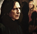 Forbidden - hermione-and-severus photo