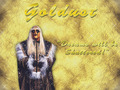 Goldust Wallpaper - goldust photo