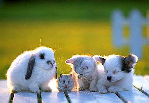 Good friends :)