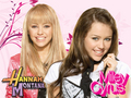 HANNAH-MILEY FANS - miley-cyrus-and-hannah-montana-lovers wallpaper