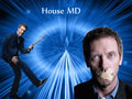 House M.D wallpaper - house-md wallpaper