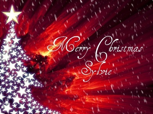 Merry Weihnachten Sylvie!!