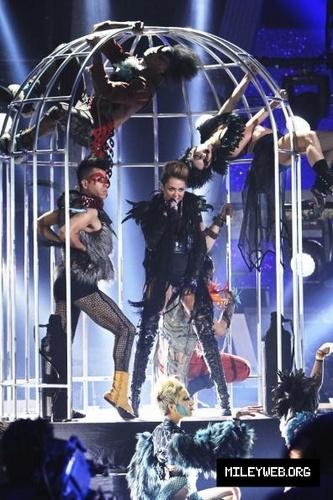 Miley تصویر