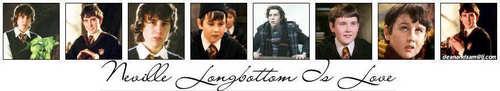Neville - Banner