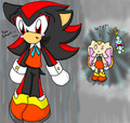 Shadow wearing Cream's clothes XD - shadow-the-hedgehog photo