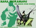 Shikamaru!!! EEEK!!!!