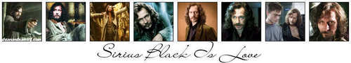 Sirius Black - Banner
