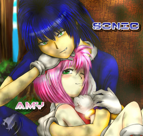 Sonic and Amy Humanized