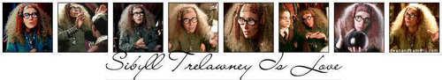 Sybill Trelawney - Banner