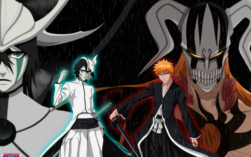 Ulquiorra and Ichigo - bleach-anime Wallpaper