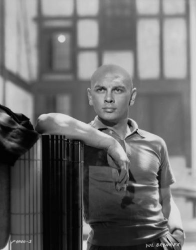 Yul Brynner wallpaper called Yul Brynner