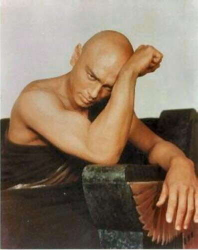 Yul Brynner Обои containing skin titled Yul Brynner
