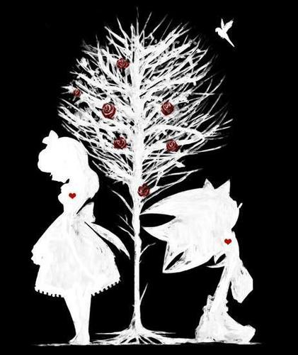 shadow x maria