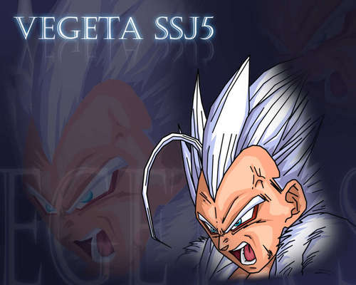 ssj5 Vegeta - vegeta Photo