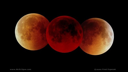 Paganism wallpaper titled Lunar Eclipse Phases