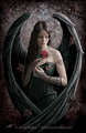 Goth Angel - paganism photo