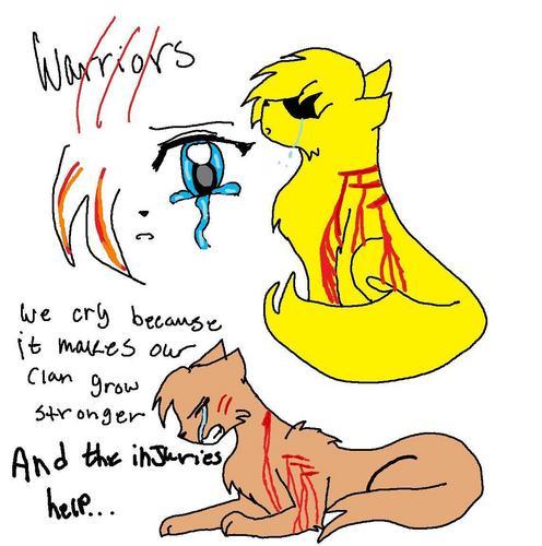 warriors wolpeyper i made