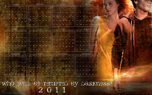 "Mortal Instruments wallpaper with a fountain titled ""City of Fallen Angels"" 2011 Calendar Wallpaper"