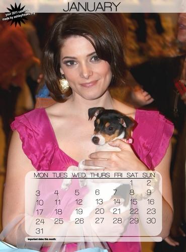 Ashley 2011 Calendar!