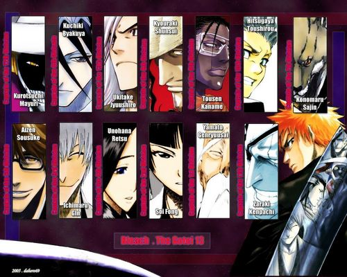 Bleach anime achtergrond containing anime and a stained glass window entitled Bleach - The Gotei 13