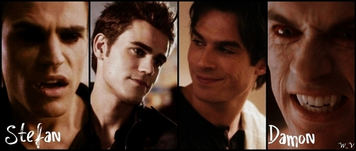 Damon and Stefan Salvatore karatasi la kupamba ukuta containing a portrait entitled Damon vs Stefan <3