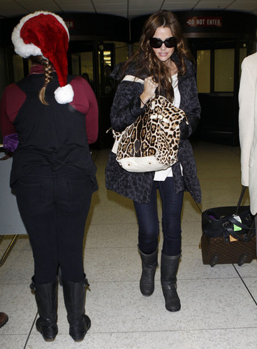 Denise Richards wallpaper with sunglasses, a fur coat, and a business suit entitled Denise @ LAX