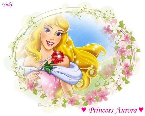 Princess Aurora fondo de pantalla possibly containing a bouquet called disney Princess Aurora