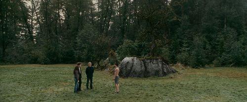 এডোয়ার্ড ও বেলা দেওয়ালপত্র possibly with a wickiup, a ponderosa, and a sitka ফিটফাট entitled Edward & Bella-Eclipse