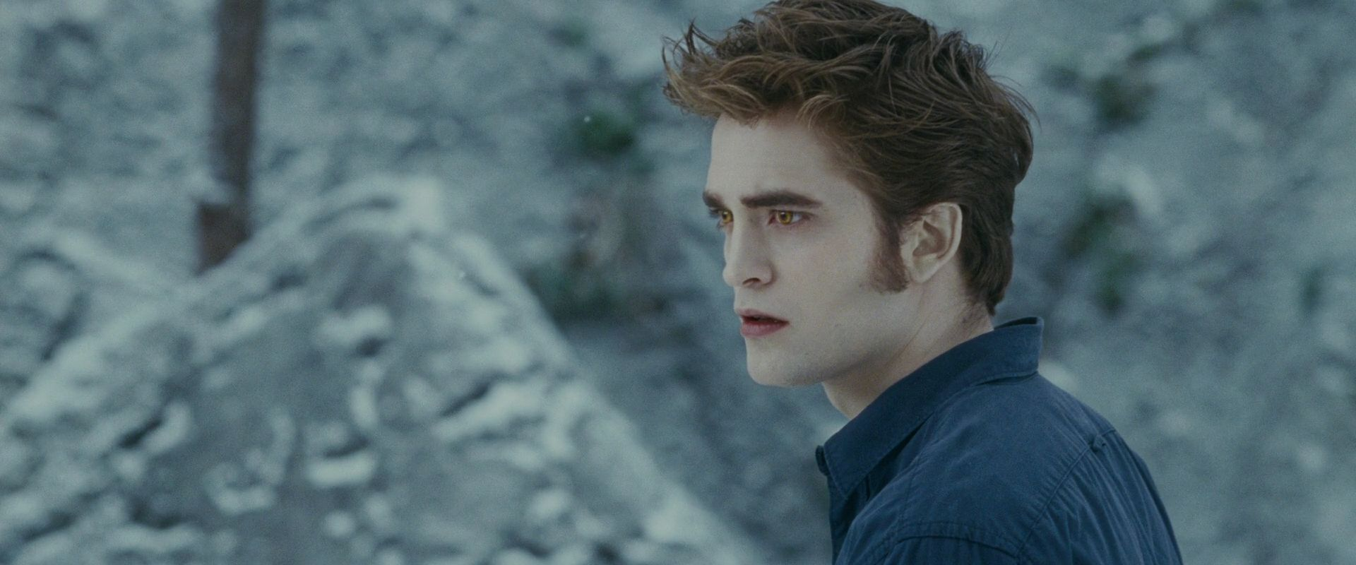 Edward Cullen - Edward Cullen Photo (18085374) - Fanpop
