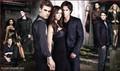 Girls of TVD - girls-of-the-vampire-diaries photo