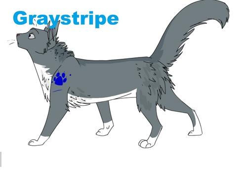 Graystripe