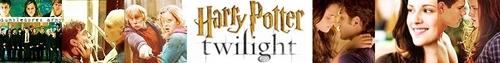 HP vs. twilight Banner