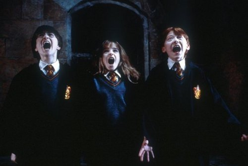 Harry,Ron and Hermione - harry-potter Photo