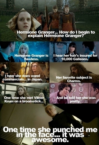 Hermione Granger karatasi la kupamba ukuta probably with anime entitled How Do I Begin To Explain Hermione Granger?