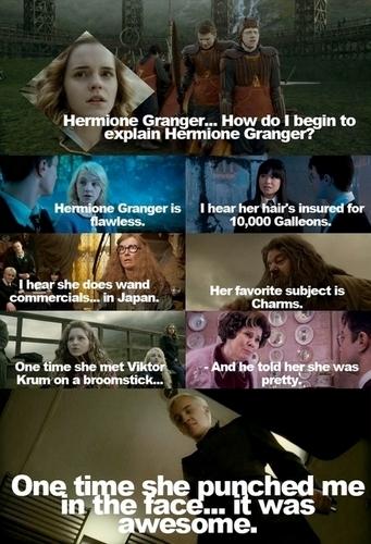 Hermione Granger karatasi la kupamba ukuta possibly with anime called How Do I Begin To Explain Hermione Granger?