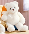 I luv my teds........... - stuffed-animals photo