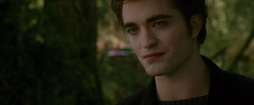 The Cullens wallpaper possibly containing a portrait entitled New Moon Screencaps [HQ]