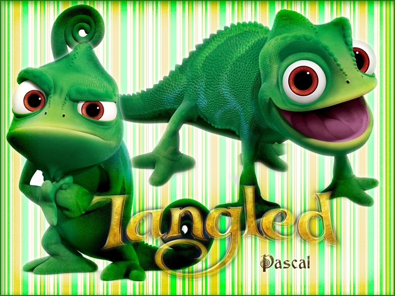 Pascal Tangled Foto 18021853 Fanpop