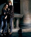 Romione - DH - romione photo